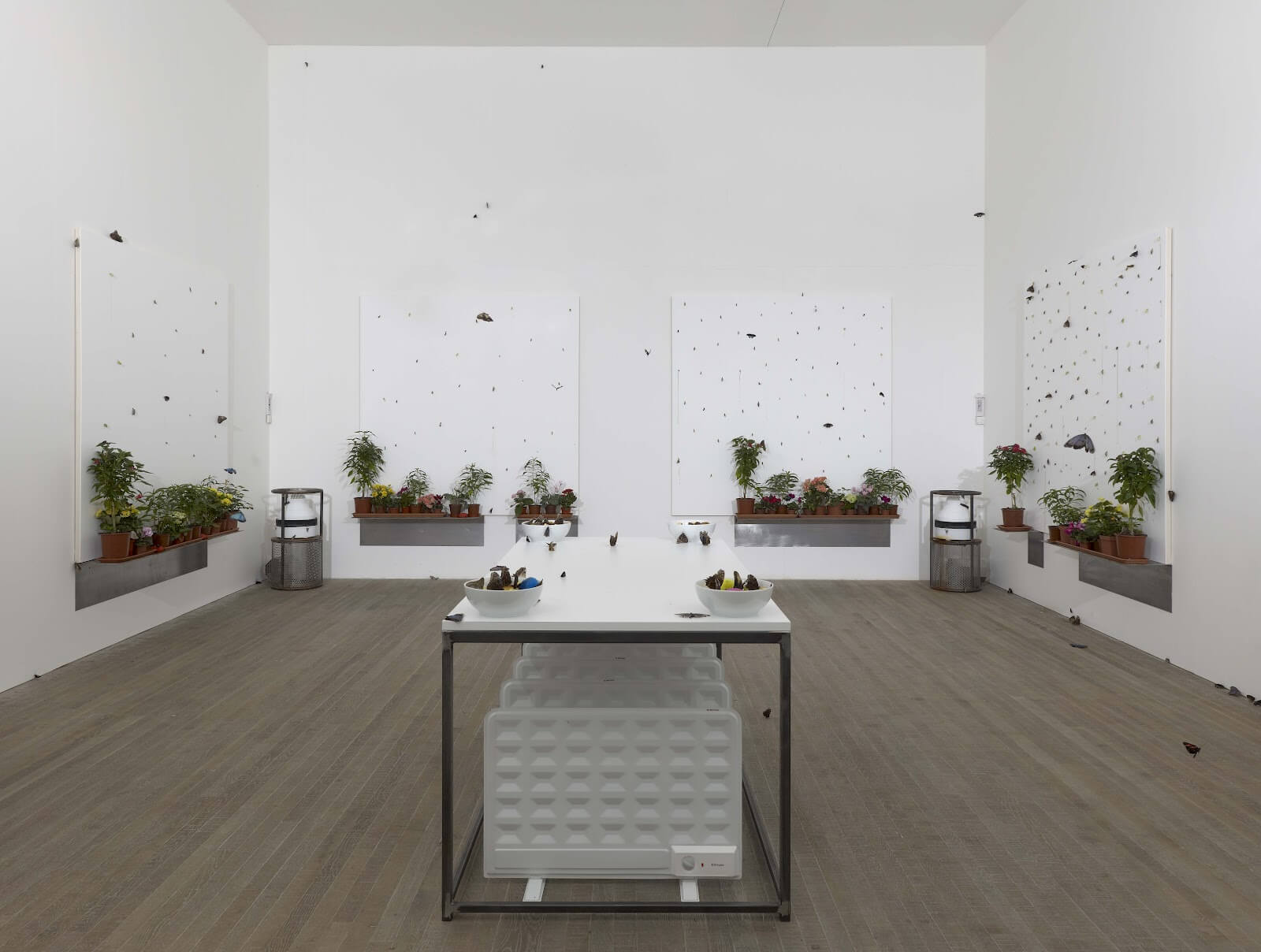 Damien Hirst: In and Out of Love